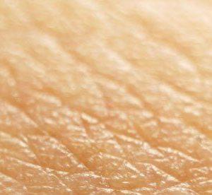 antioxidanten beschermen de huid tegen veroudering