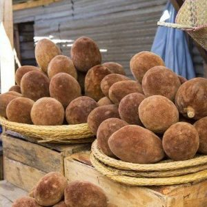 bao-med vruchten baobab boom