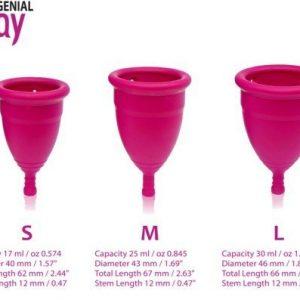 Gentle Day menstruatiecup 3 maten in 1 beeld site niet transparant