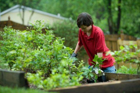 Vrouw in tuin beweging