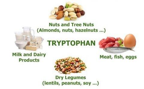 voeding rijk aan tryptofaan