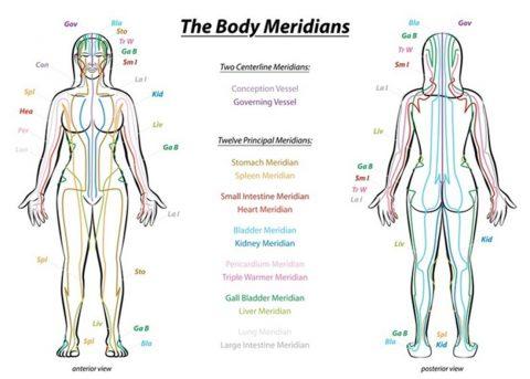 Meridianen in de Chinese Geneeskunde